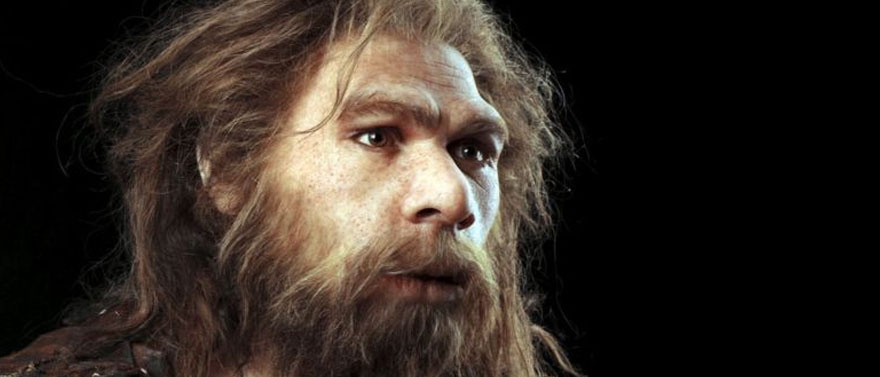 Neanderthal-toothpics