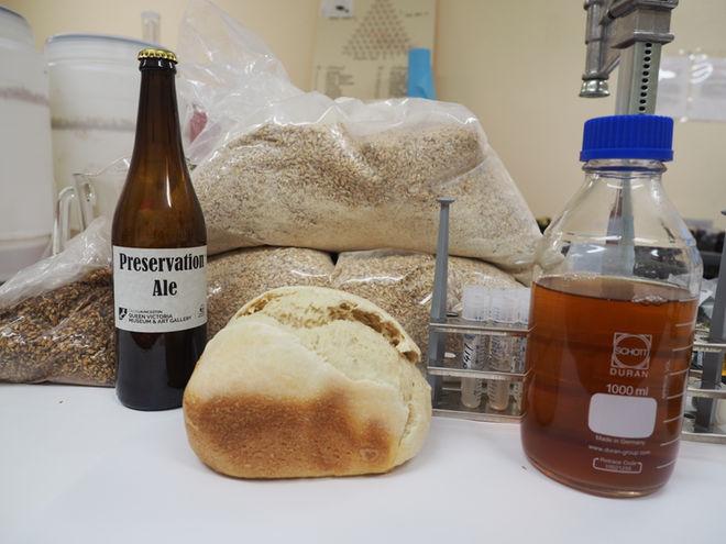 oldest-beer-archaeform-preserved-yeast-12